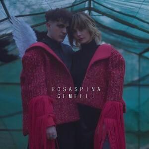 cover_rosaspina_gemelli