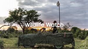 Wildlife Watch_1